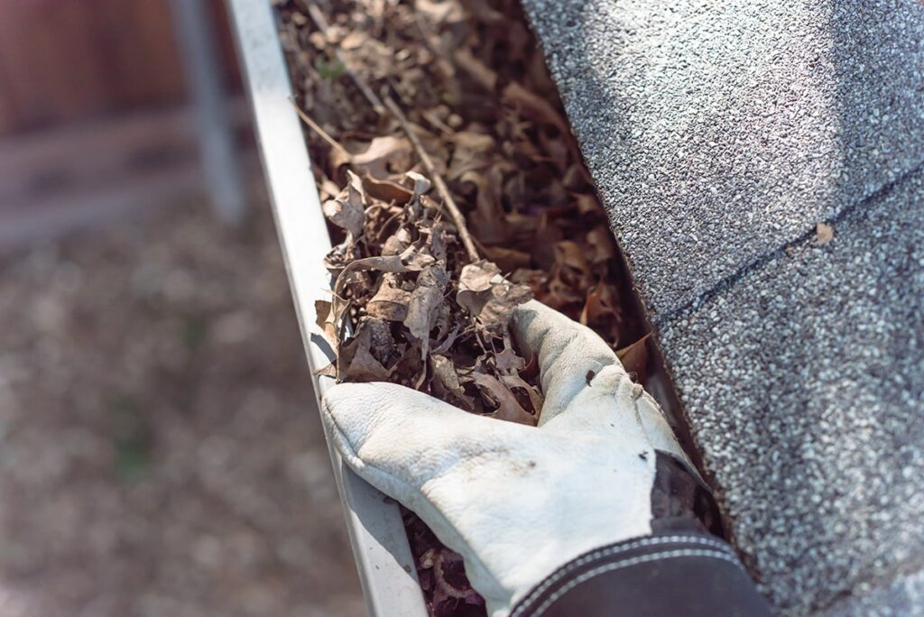 The Importance of Gutter Cleaning and Leaf Removal for Your House