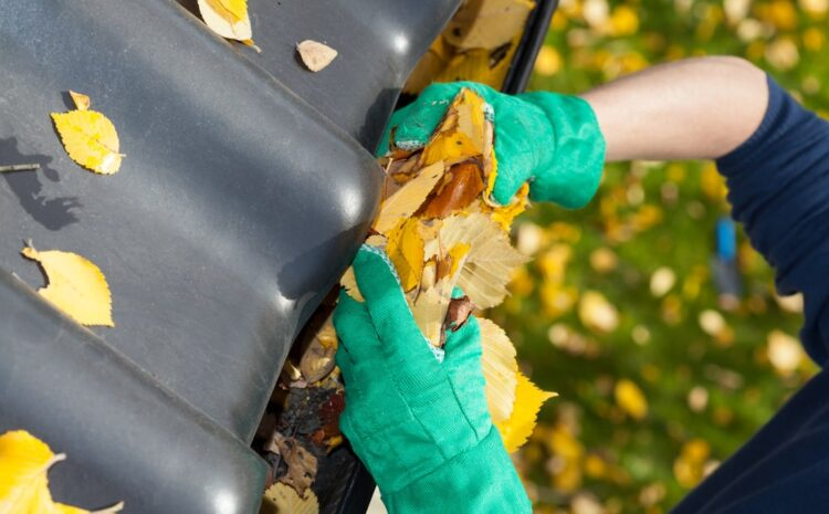 Do You Need a Professional to Clean Gutters?